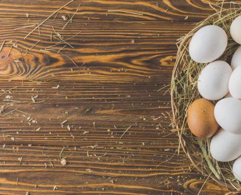 categorias de huevos